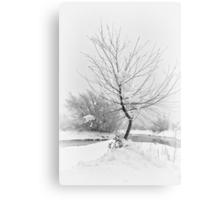White Bend Canvas Print