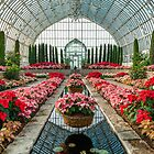 Marjorie McNeely Conservatory by JimGuy