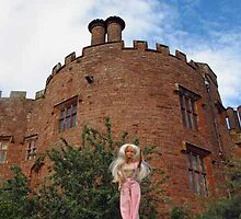 Powis Castle by VeronicaPurple