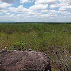 Kakadu horizon - Northern Territory, Australia by John Kleywegt