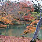 Japan - Autumn 2 by Glenn Browning