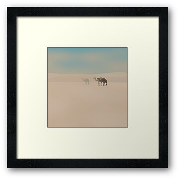Three dromedary camels walking in Sahara desert by CatchyLittleArt