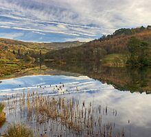 Rydal Water #2 by Jamie  Green