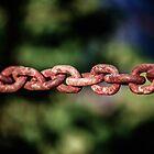 Distinct Links by John Dunbar
