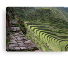 Path to an Andean  Wonder Canvas Print