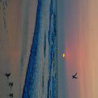Sunrise by Isabellalala