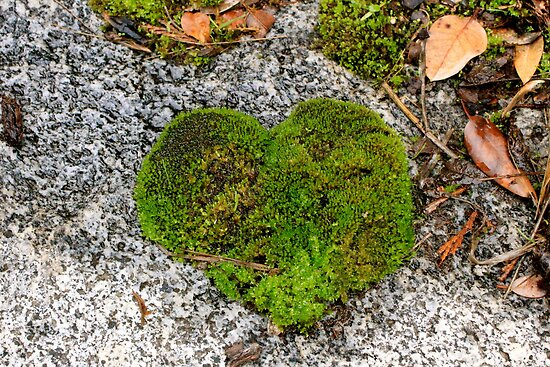 Heart of Moss by LoveJess