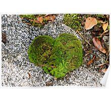 Heart of Moss Poster