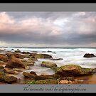 Turimetta rocks by donnnnnny