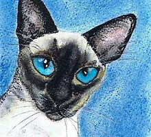 SIAMESE CAT by Hares and Critters