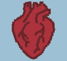 Anatomically correct 8bit heart by squidyes