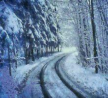 Winter's Road by Joe Misrasi