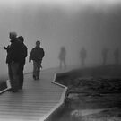 Walking in the Mist in Yellowstone by ayresphoto
