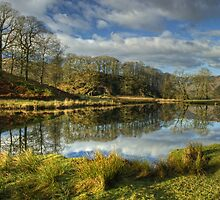 The River Brathay by VoluntaryRanger