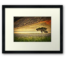 The Edge of the Desert Framed Print