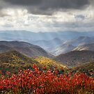 Blue Ridge Parkway Fall Foliage - The Light by Dave Allen