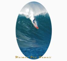 Waimea Bay Boogaloo by kevin smith  skystudiohawaii