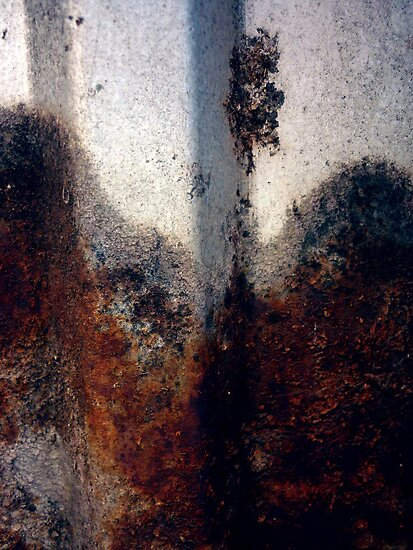 Rust # 400 by Frederick James Norman