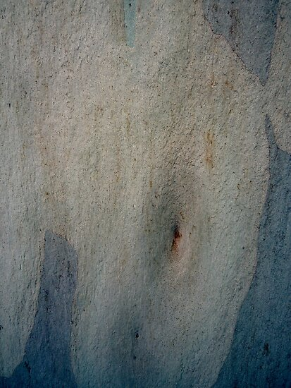 Bark Abstract # 6 by Frederick James Norman