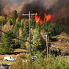 """"""" Wildfire in Town  - 1 """" by fortner"""