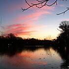 Sunset over the Avon River -November 2012 by Barbara Storey