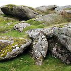 Granite Rocks At Shelstone Tor by Lawrence Dyer