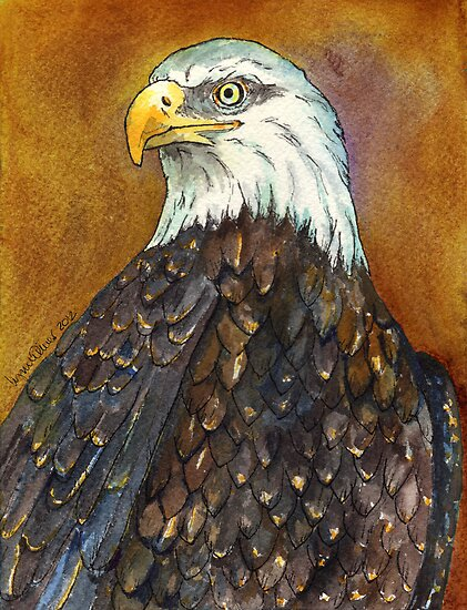 Bald Eagle by Lynn Oliver