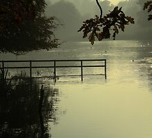 Tatton Mere by DMHotchin