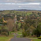 Whittlesea, Victoria by Pauline Tims