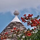 Trullo in Alberobello by Renzo Re