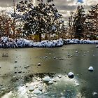 Frozen Lake by Renzo Re
