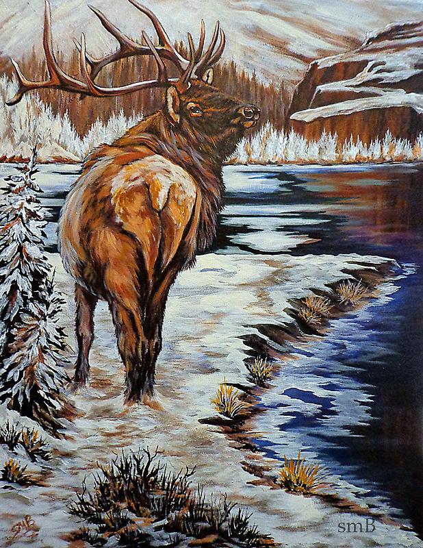 Winter by Susan Bergstrom