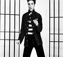 Elvis Presley Jailhouse Rock iPhone Cover by iphonejohn