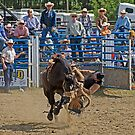 RODEO ANTICS by Raoul Madden