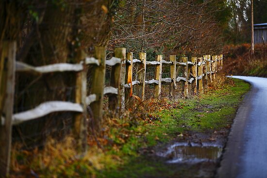 A Mending  Fence    by Stephen J  Dowdell