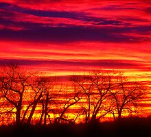 Fire In The Soul Sunrise by Greg Summers