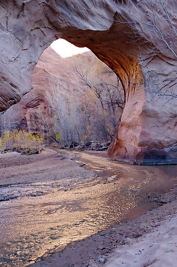 Coyote Natural Bridge by Paul Magnanti