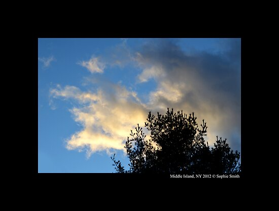 December Evening Sky  by © Sophie W. Smith