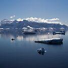 Reflecting on Antarctica 062 by Karl David Hill