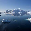 Reflecting on Antarctica 072 by Karl David Hill