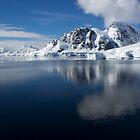 Reflecting on Antarctica 086 by Karl David Hill