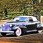 1940 CADILLAC COUPE RESTING IN SHADE by Randy & Kay Branham