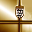 England Footbal / Soccer gold edition by ALIANATOR