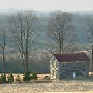 Forgotten Farmhouse In Late Winter by Gene Walls