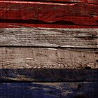 Vintage France Flag - Cracked Grunge Wood by UltraCases