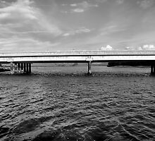 Highway 1 Bridge Over Elkhorn Slough by Bob Wall