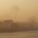 Misty morning at Agden by DMHotchin