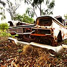 Ford Galaxy by Mark Ingram