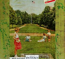 adolescent politics by adamkissel