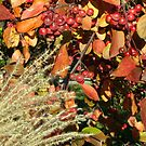 Autumn Crabapples &amp; Tall Grass In The Wind by Gene Walls